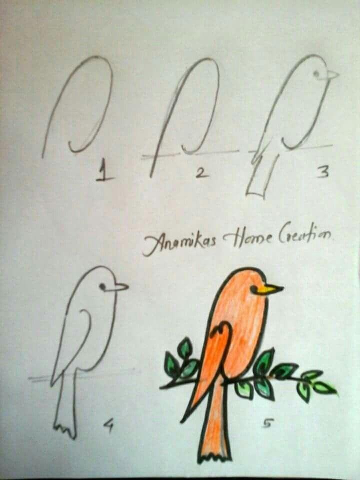 how to draw a cartoon bird easy