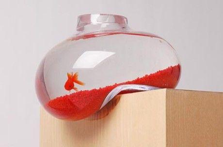 A Special Fish Tank 6 17 Fish Tank Design Bubble Tanks Aquarium Design