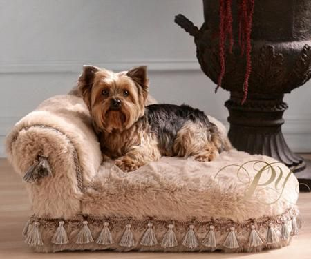 fancy pet furniture. luxury pet bed u2014 handupholstered in a furry commercialgrade fabric and constructed fancy furniture