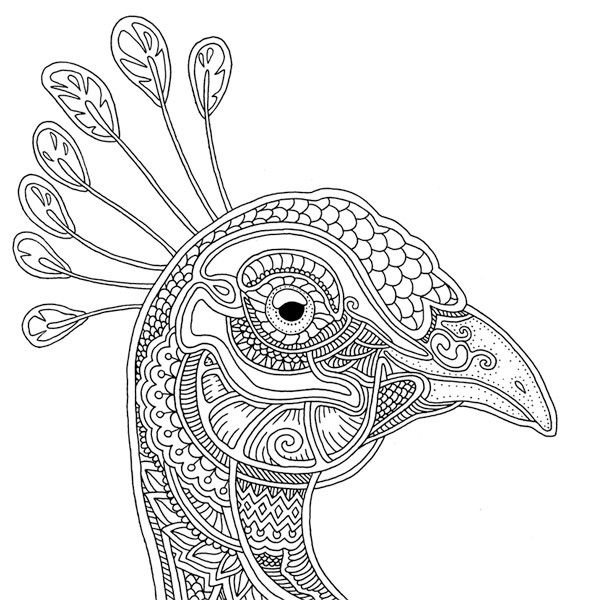 """""""Ветер уносит цветы"""" (With images) 