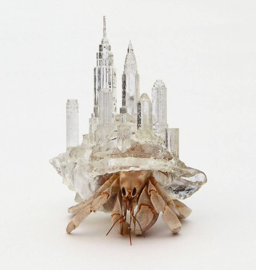 architectural hermit crab homes by aki inomata  hermit crabs make their home in the new york skyline or a paris apartment in the intricately crafted plastic habitats, which the artist simply left among natural seashells as options for the creatures.  http://www.designboom.com/art/architecturally-influenced-hermit-crab-habitats-by-aki-inomata/