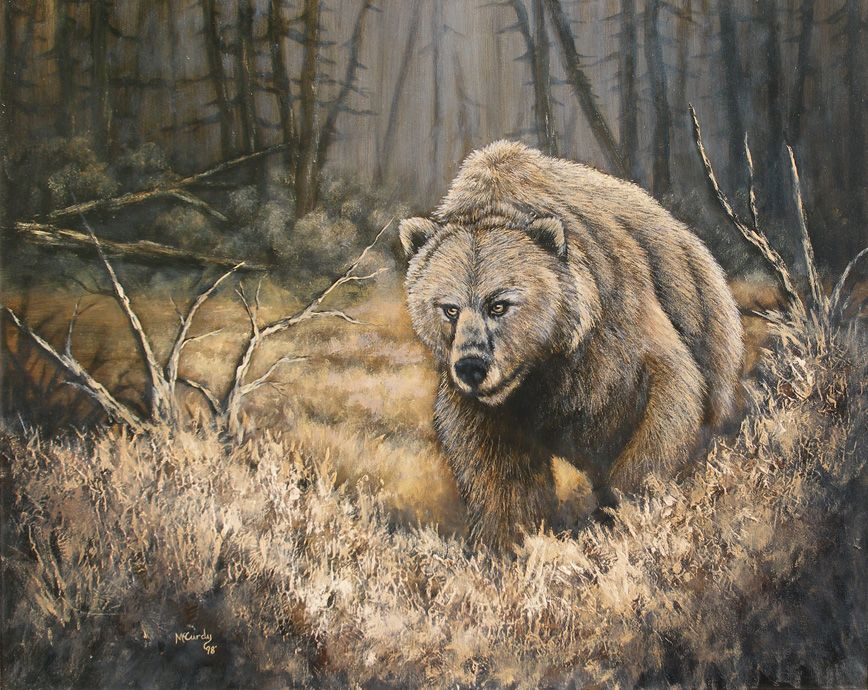 The Bear by Kchan27 on DeviantArt