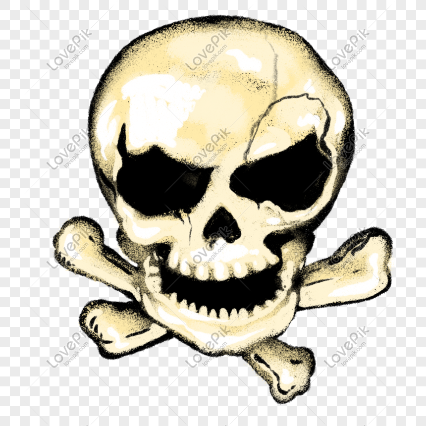 الرسوم التوضيحية الإبداعية الجمجمة الجمجمة Skull Illustration Skull Illustration
