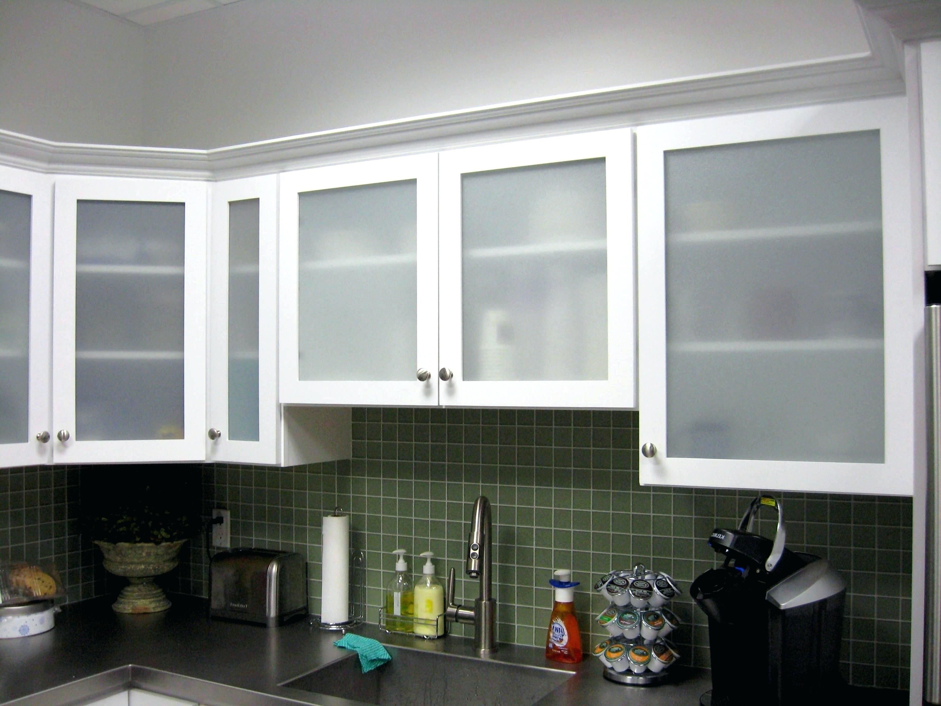 Captivating Frosted Glass Kitchen Cabinet Doors Glass Fronted