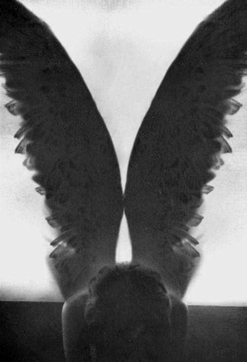 Resultado De Imagen Para Angeles Caidos Tumblr Angeli E Demoni