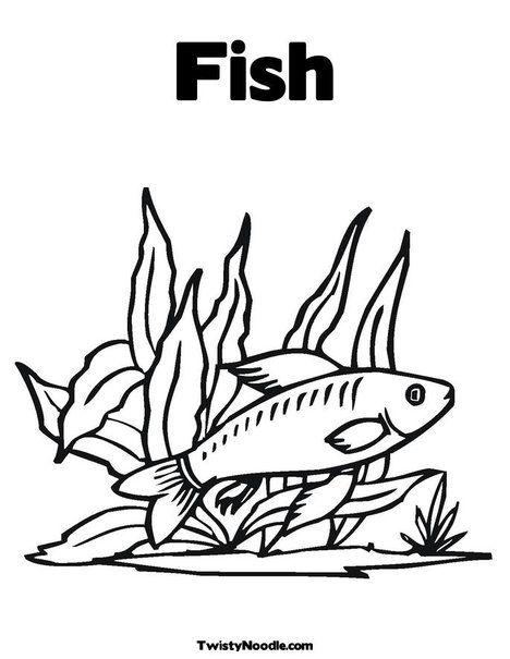 Fish In Seaweed Coloring Page Animal Coloring Pages Fish