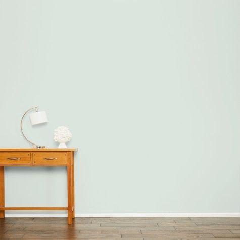 Pale Eau De Nil Paint Living Room Colors Home