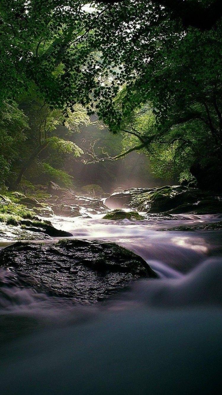 Flowing Forest River Hd Wallpaper Landscape Sunset Wallpaper Iphone 5s Wallpaper Hd wallpaper river forest sunset clouds