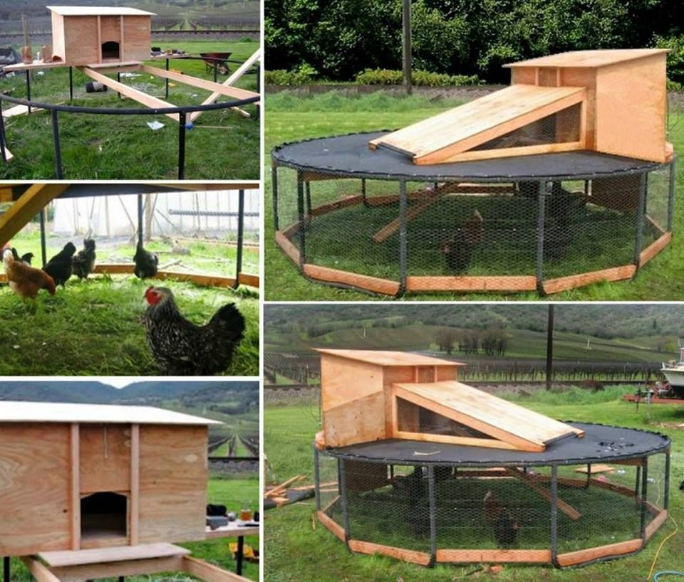 Upcycle your old Trampoline into this fabulous Chicken Coop ...