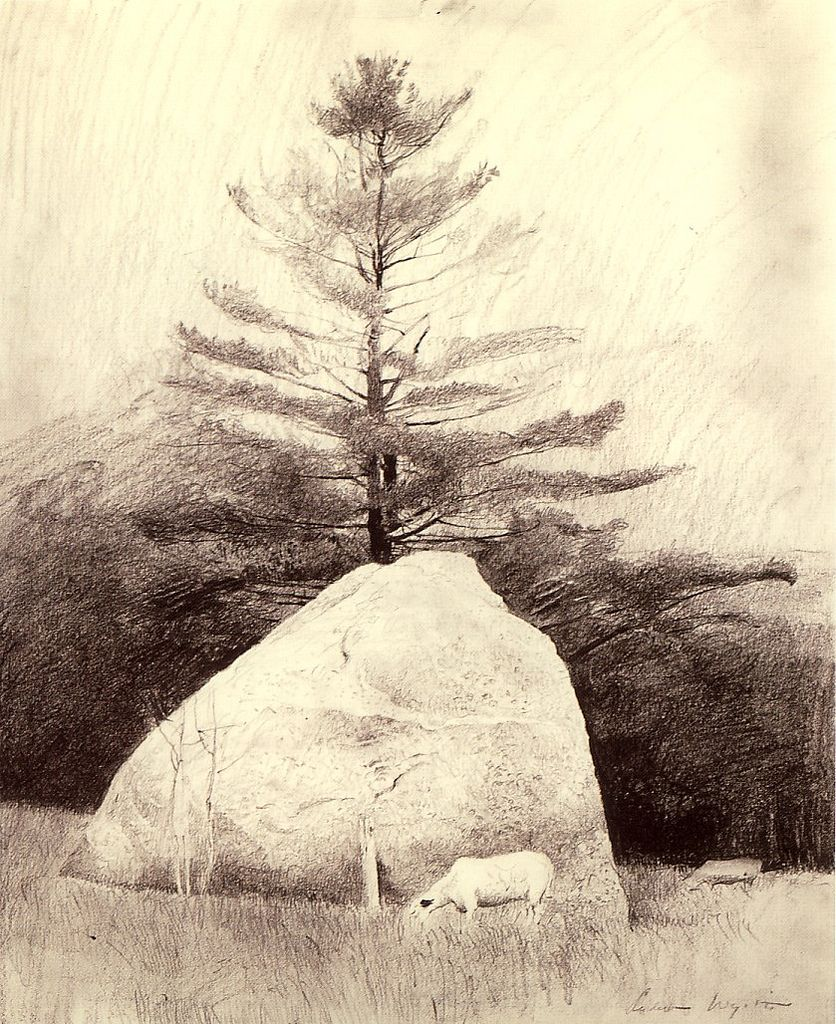 Pencil drawing by Andrew Wyeth