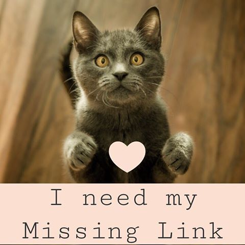 Don T Forget That The Missing Link Vegetarian Well Blend Is Suitable For Both Cats And Dogs Just Add It To Their Food Missinglin Cat Breeds Cats Cute Cats Photos