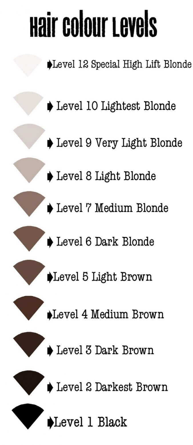 Levels Of Hair Color Best Color Hair For Hazel Eyes Check More At