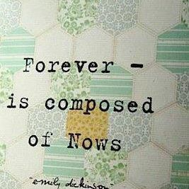 Stay in the now. #quote #inspiration #zappos