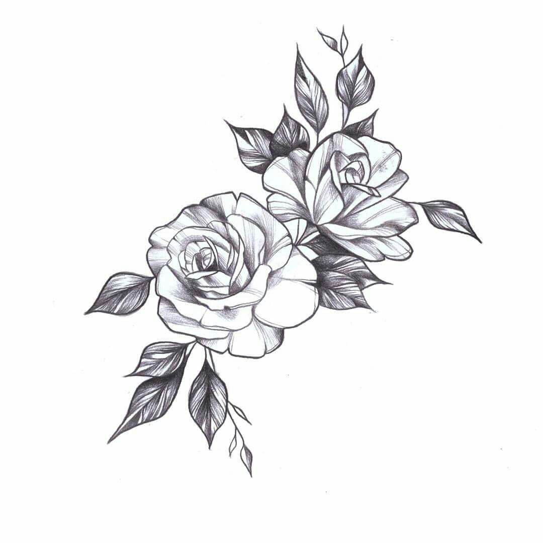 Gardenia Reinheit Und Susse In 2020 Rose Drawing Tattoo Tattoos Roses Drawing