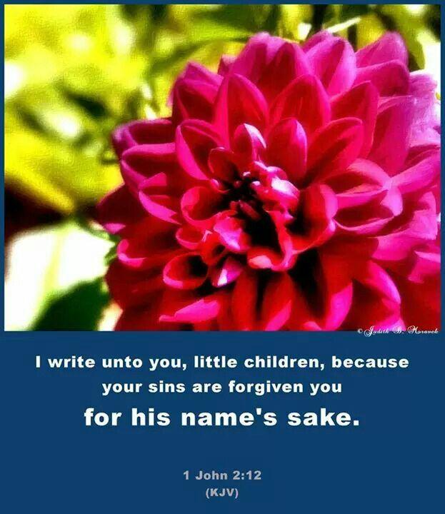 1 John 2:12 KJV
