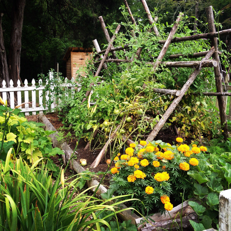 Kitchen Garden Potager