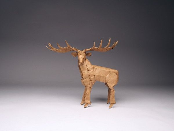 Irish Elk, opus 537