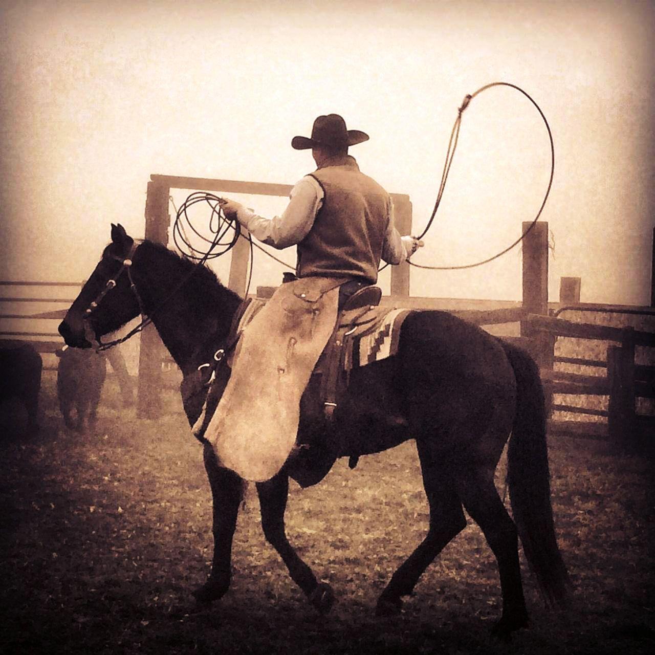 True Cowboys at Vintage Cowboy Winery