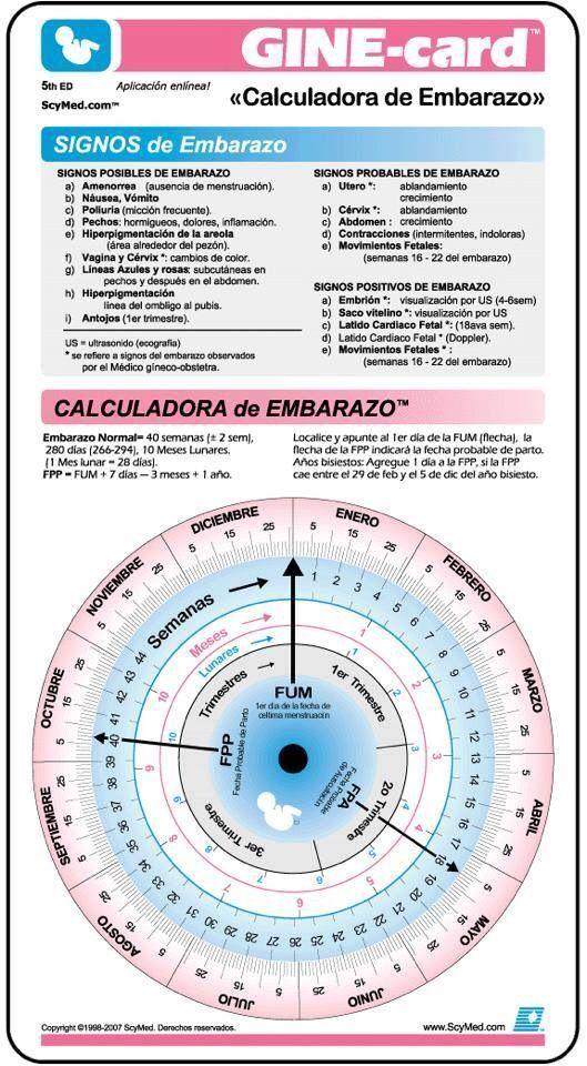 Calculadora de Embarazo, conoce est practica herramienta y ...