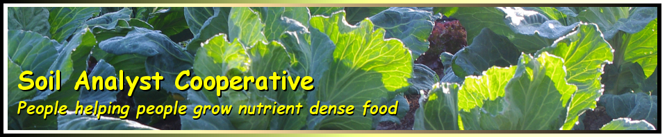 The Intelligent Gardener Growing Nutrient Dense Food Pdf