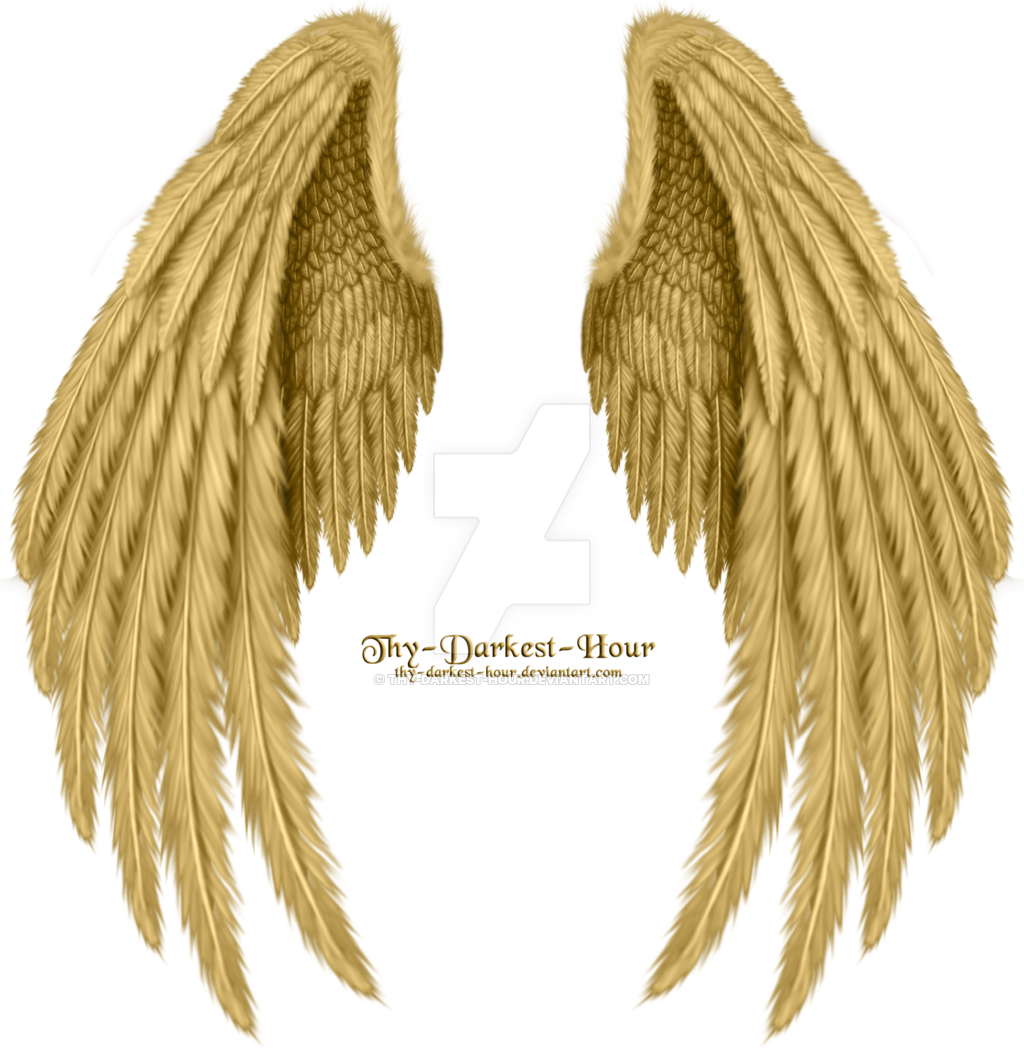 Winged Fantasy V 2 Golden Premium Psd Download By Thy Darkest Hour D5c27d8 Png 1024 1059 Wings Art Wings Tattoo Wings Drawing