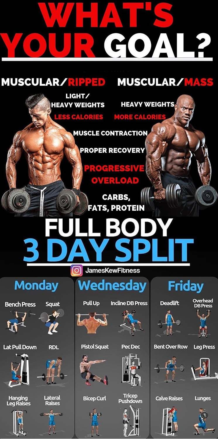 How To Build Muscle Weight Training Workouts Body Workout Plan Workout Plan Gym