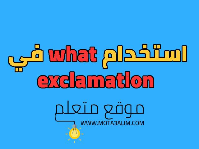 استخدام What في Exclamation Exclamatory Sentences Sentences Bart Simpson