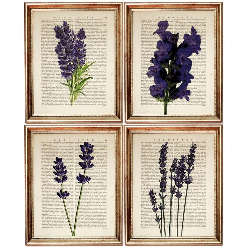 Set Of 4 Lavender Prints Lavender Wall Art Botanical Dorm Etsy In 2020 Wall Art Prints Dictionary Art Print Lavender Walls