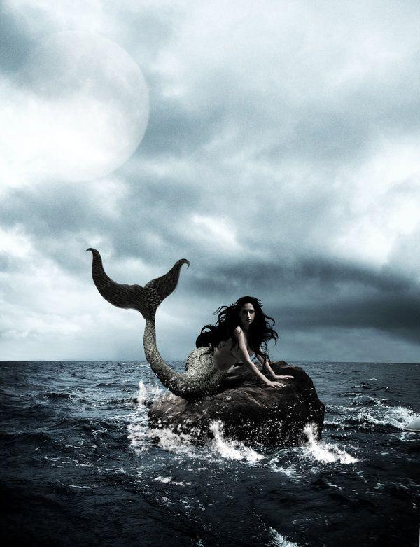 Sirena Fadas Bruxas E Sereia