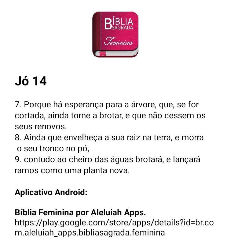 Pin De Eluh Em Loved Ao Cheiro Das Aguas Biblia Sagrada Sagrada