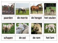 123 Lesidee - Gr1/2 Th boer woord