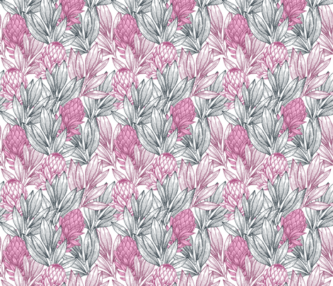 Colorful Fabrics Digitally Printed By Spoonflower Protea Flower Spoonflower Fabric Protea Flower Spoonflower