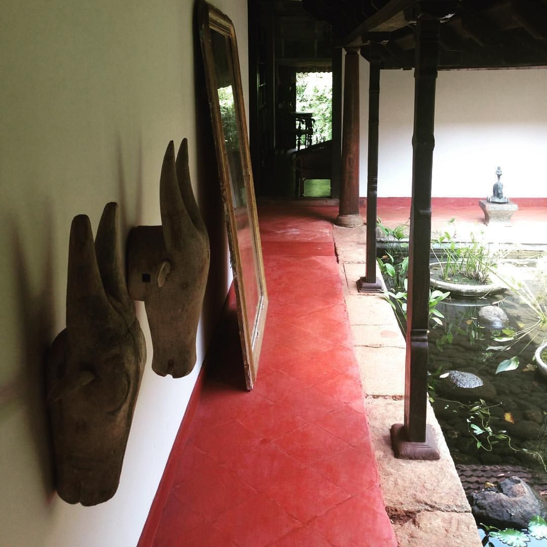 Red oxide floors India, your beauty Flooring, Red, Cow