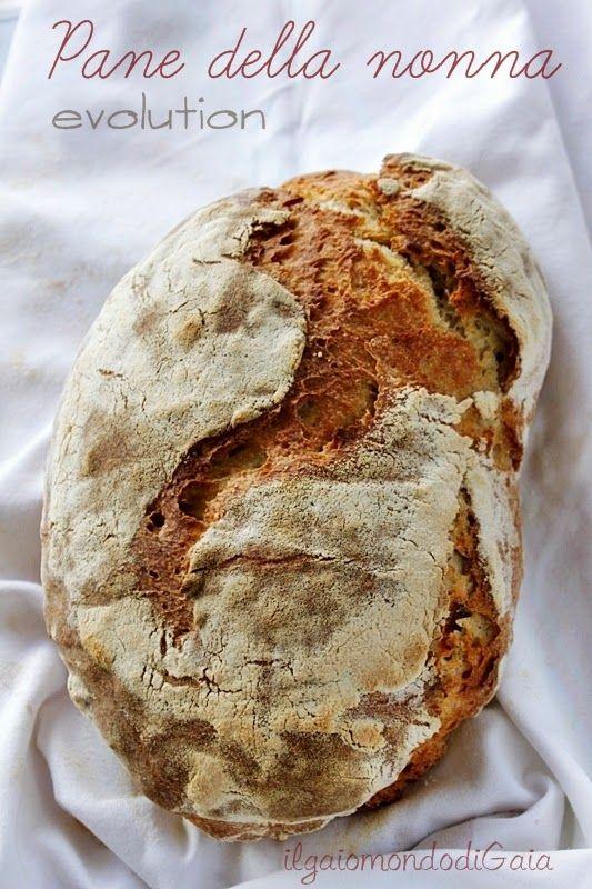 Il Gaio Mondo Di Gaia Pane Della Nonna Evolution Pane Artigianale Ricette Di Cucina Ricette