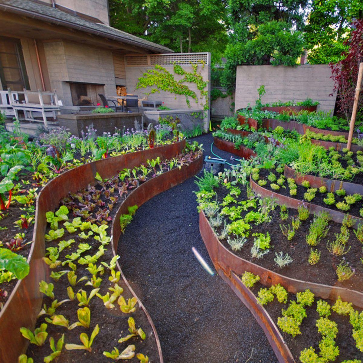 10 Creative Vegetable Garden Ideas: 10 Best Vegetable Garden Designs To Increase Your Home