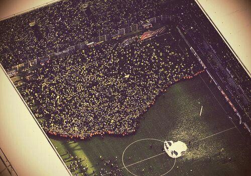 Borussia Dortmund Fans Borussia Dortmund Dortmund Heja Bvb