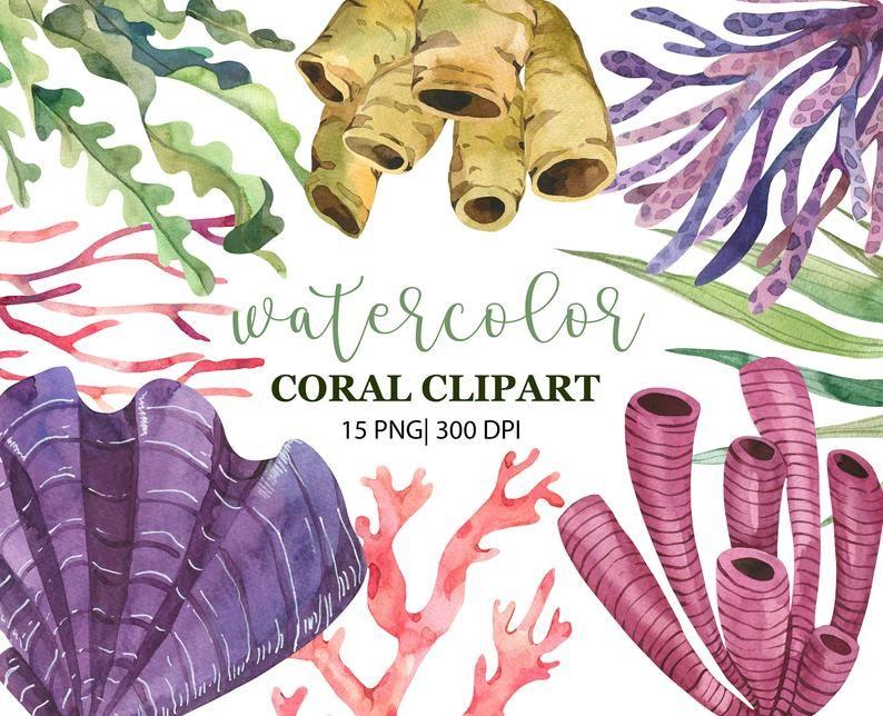 11 Watercolor Coral Clipart, Ocean Clipart, Sea coral reef clipart, Underwater Coral, Sea Clip Art, Nautical Clip Art, Coral reef, PNG, Digital