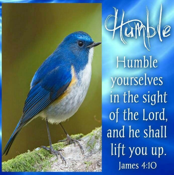 The  Living... — James 4:10 (KJV) - Humble yourselves in the sight... | Scripture verses, Book of james, Word of god