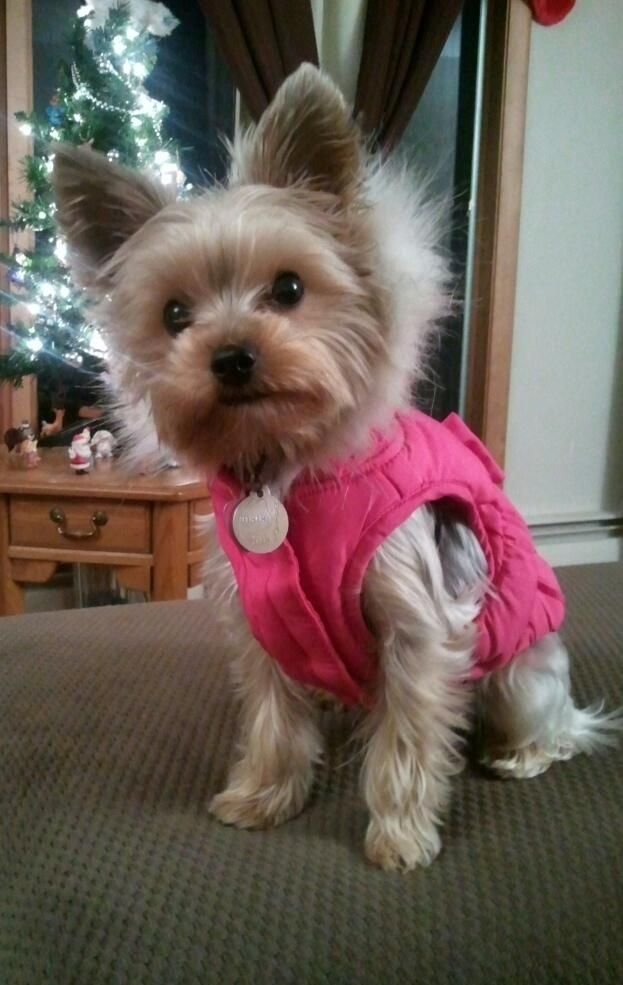 Sportin' her new winter jacket