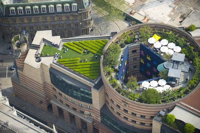 London Coq D Argent Restaurant Photo By Jason Hawkes Roof Landscape Green Roof Roof Garden