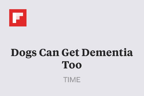 Dogs Can Get Dementia Too http://flip.it/mapdG