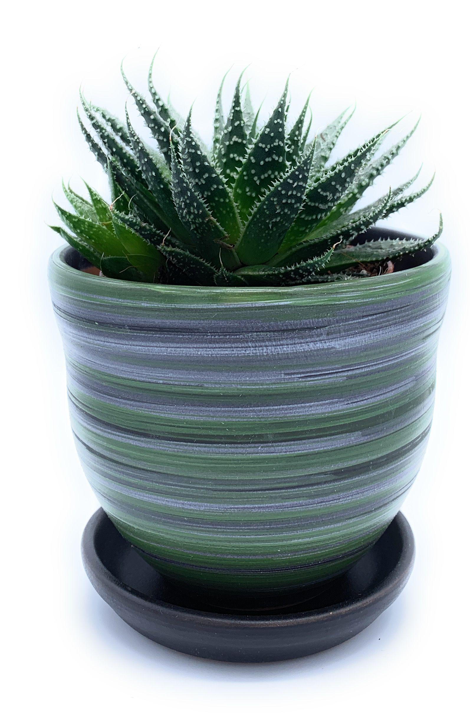 Glazed Ceramic Flower Pot With Saucer Matt Black White Green Round