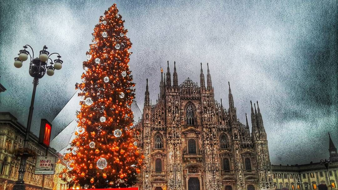 Christmas time  #inshot #happy #fashion #friends #smile #follow4follow #like4like #instamood #family #nofilter #amazing #style #love #photooftheday #nocrop #blog #blogger #bloggers #italy #italia #ig_italia #ig_italy #whywelovemilano #ilovemilano #milanocity #milanodavedere #milanodavivere #christmas #christmastree by albainstagr
