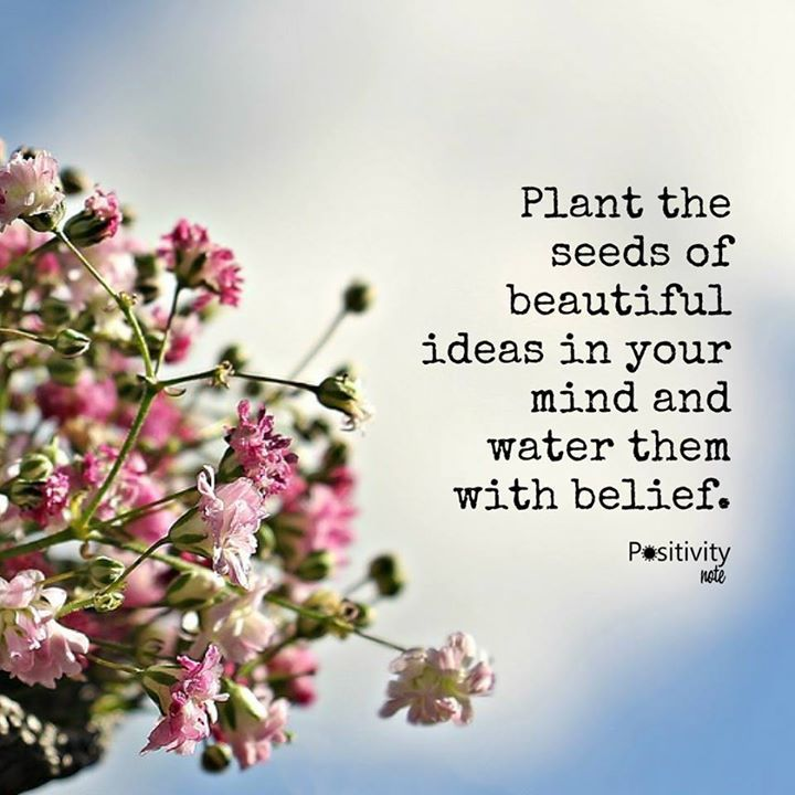 Plant The Seeds Of Beautiful Ideas In Your Mind And Water Them With Simple Planting Seeds Inspirational Quotes