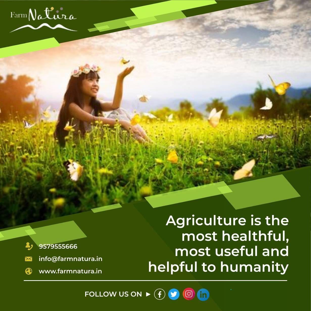 Agricultural lands For Sale Kandukuru near Airport