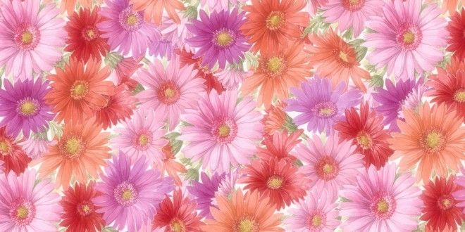 You Can Download Latest Photo Gallery Of Cool Flowers Hd Wallpapers