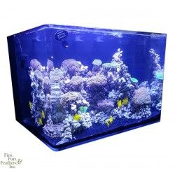 Jbj Nano Cube 45 Gallon Rl Rimless Biotope Aquarium Marine Depot Biotope Aquarium Aquarium Gallon