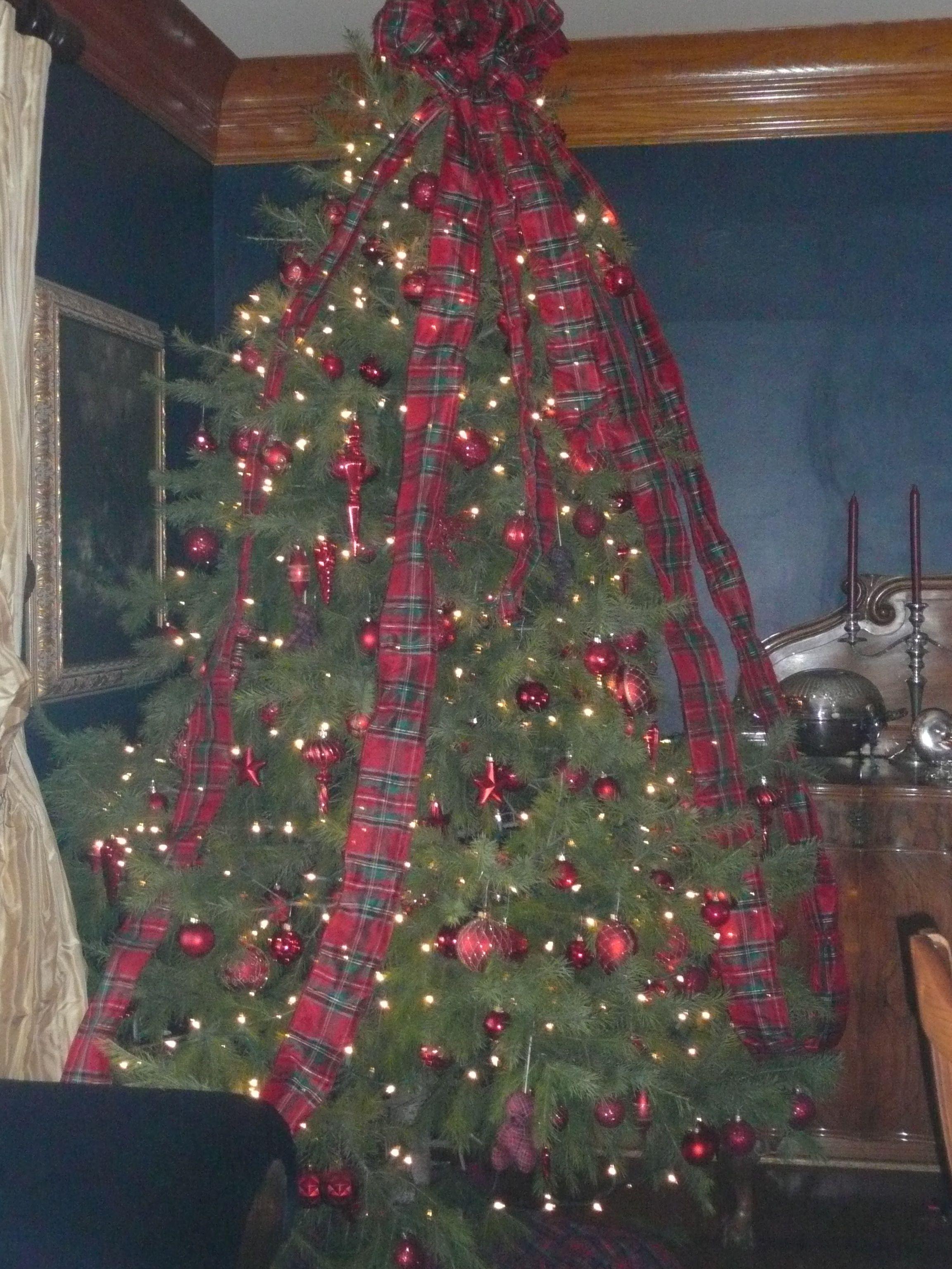 Tartan tree dining room 2010