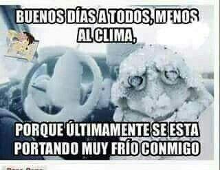 Pin De Lynx88 En Humor Memes De Frio Buenos Dias Imagenes De Frio