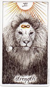 Image result for wild unknown tarot rose